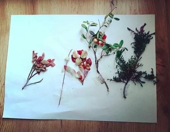 Kunstverk av naturens årstider