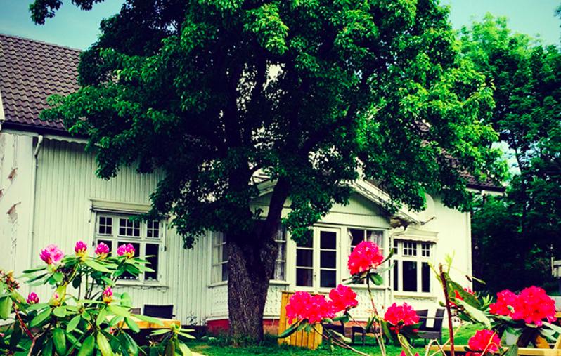 Åpen gård- Buggegården