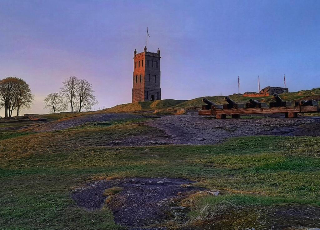 Piknik på Slottsfjellet
