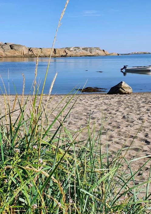 SØNSTEGÅRD friområde/strand - Hvasser